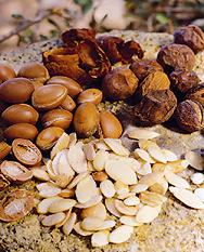 semillas%20argan.png